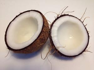 coconut kernels